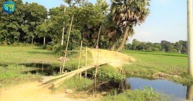 শ্রীপুর পৌরসভার বংশী ঘাটা