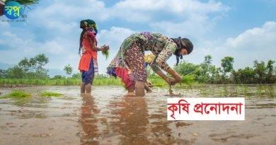 নওগাঁ জেলায় কৃষি প্রনোদনা